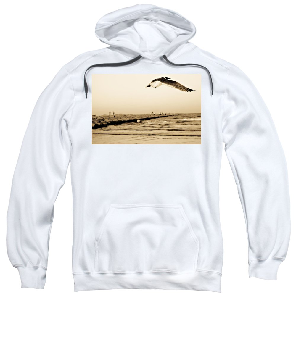 Bird Sweatshirt featuring the photograph Coastal Bird In Flight by Marilyn Hunt