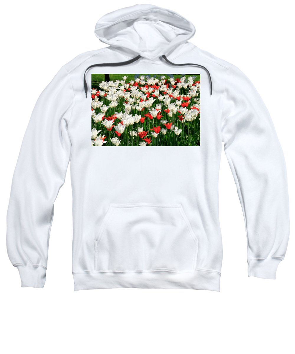 Flower Sweatshirt featuring the photograph Color Mixing by Erin Larcher