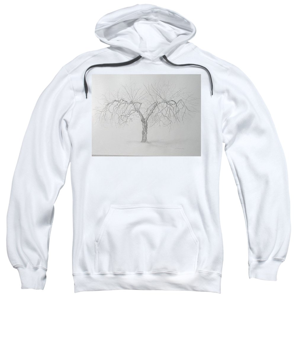 Cortland Apple Tree Sweatshirt featuring the drawing Cortland Apple by Leah Tomaino