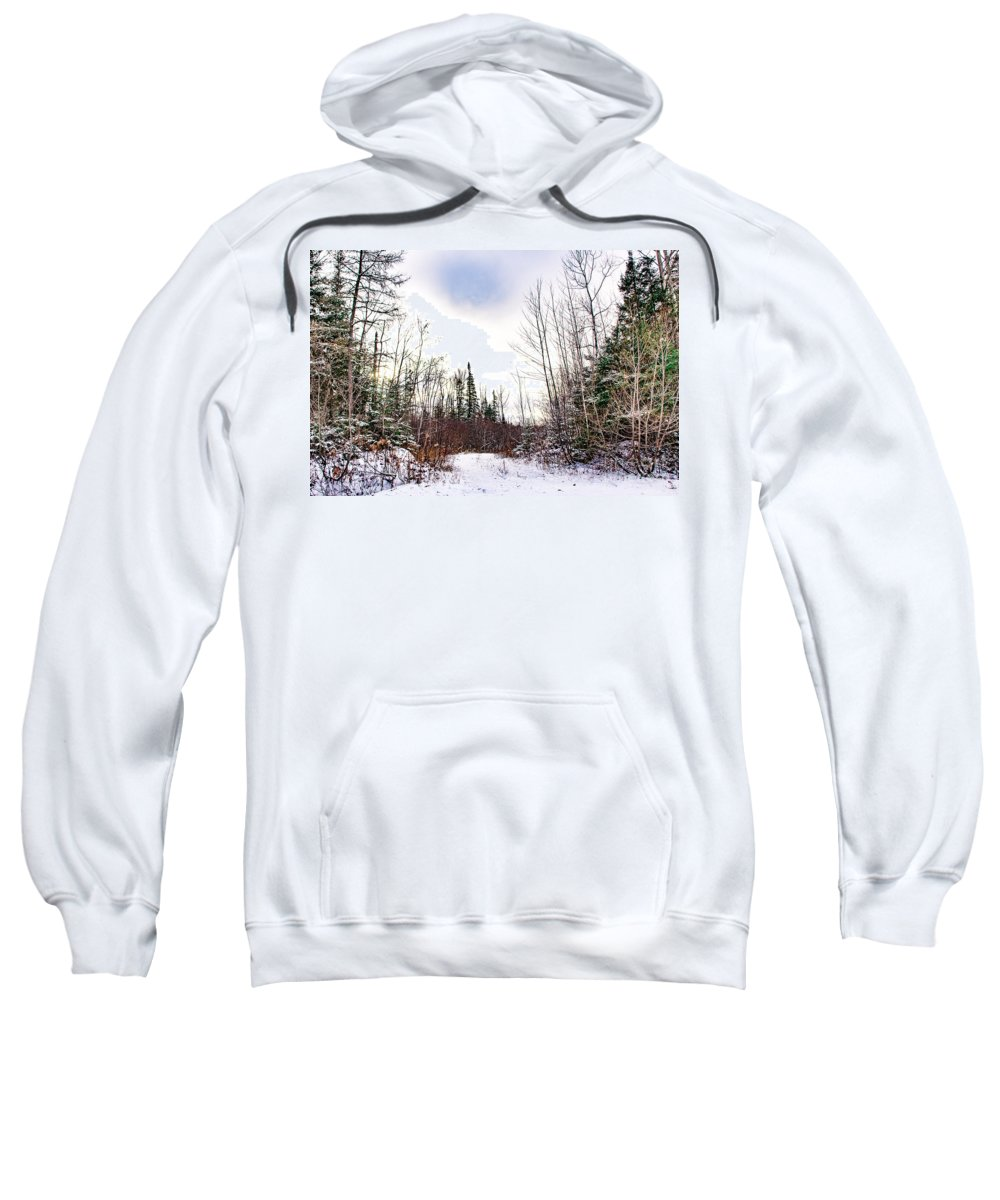 Snow Sweatshirt featuring the photograph Country Winter 5 by Wesley Farnsworth