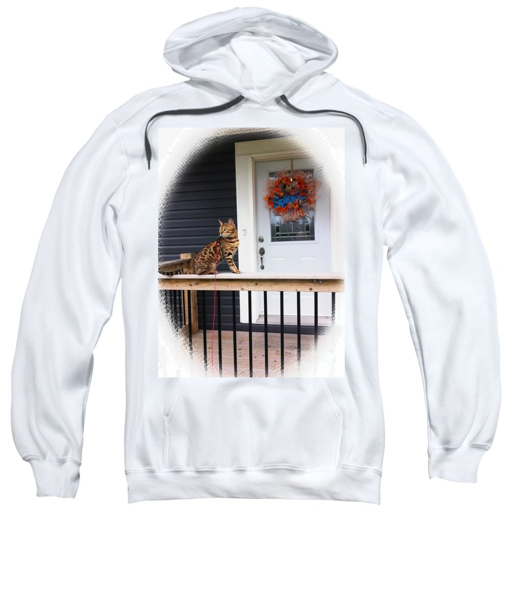 Curious Bengal Cat Sweatshirt featuring the photograph Curious Bengal Cat by Barbara Griffin