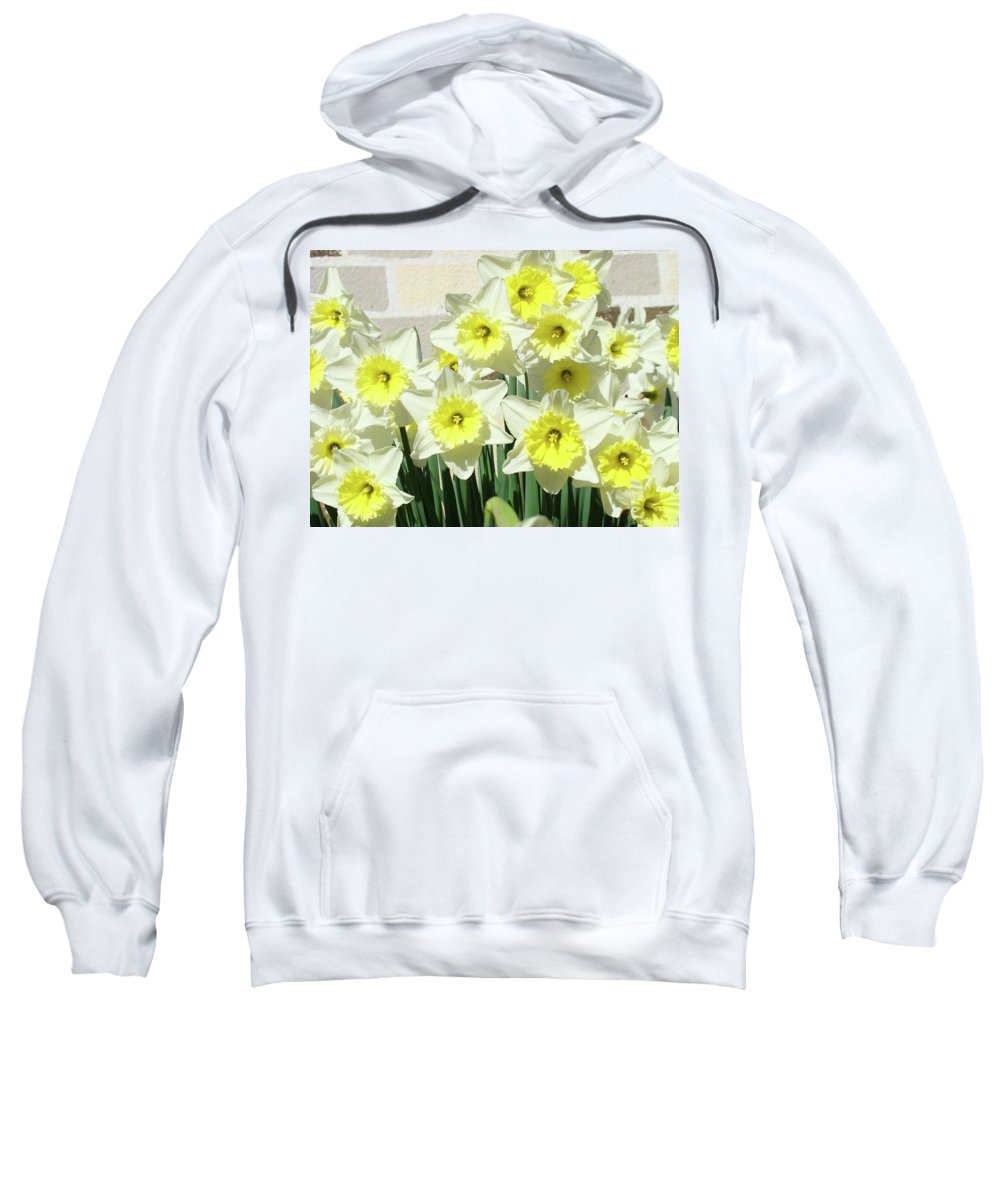 Daffodils Sweatshirt featuring the photograph Daffodil Bouquet Spring Flower Garden Baslee Troutman by Baslee Troutman