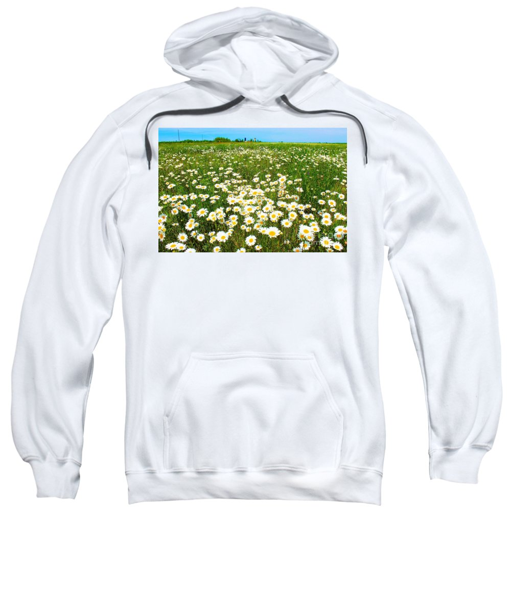 Photography Sweatshirt featuring the photograph Daisy Field by Anthony Djordjevic