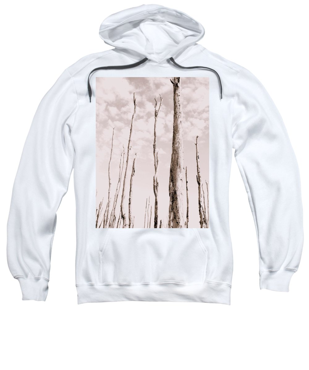 Forest Sweatshirt featuring the photograph Death Of A Forest by Ed Smith