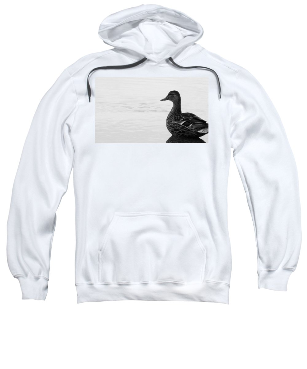 Bird Sweatshirt featuring the photograph Decoy by Ed Smith