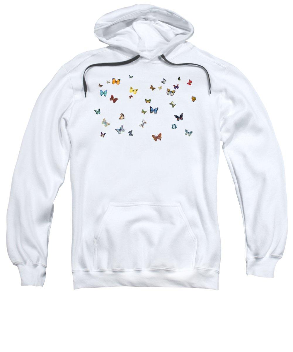 Insect Sweatshirts