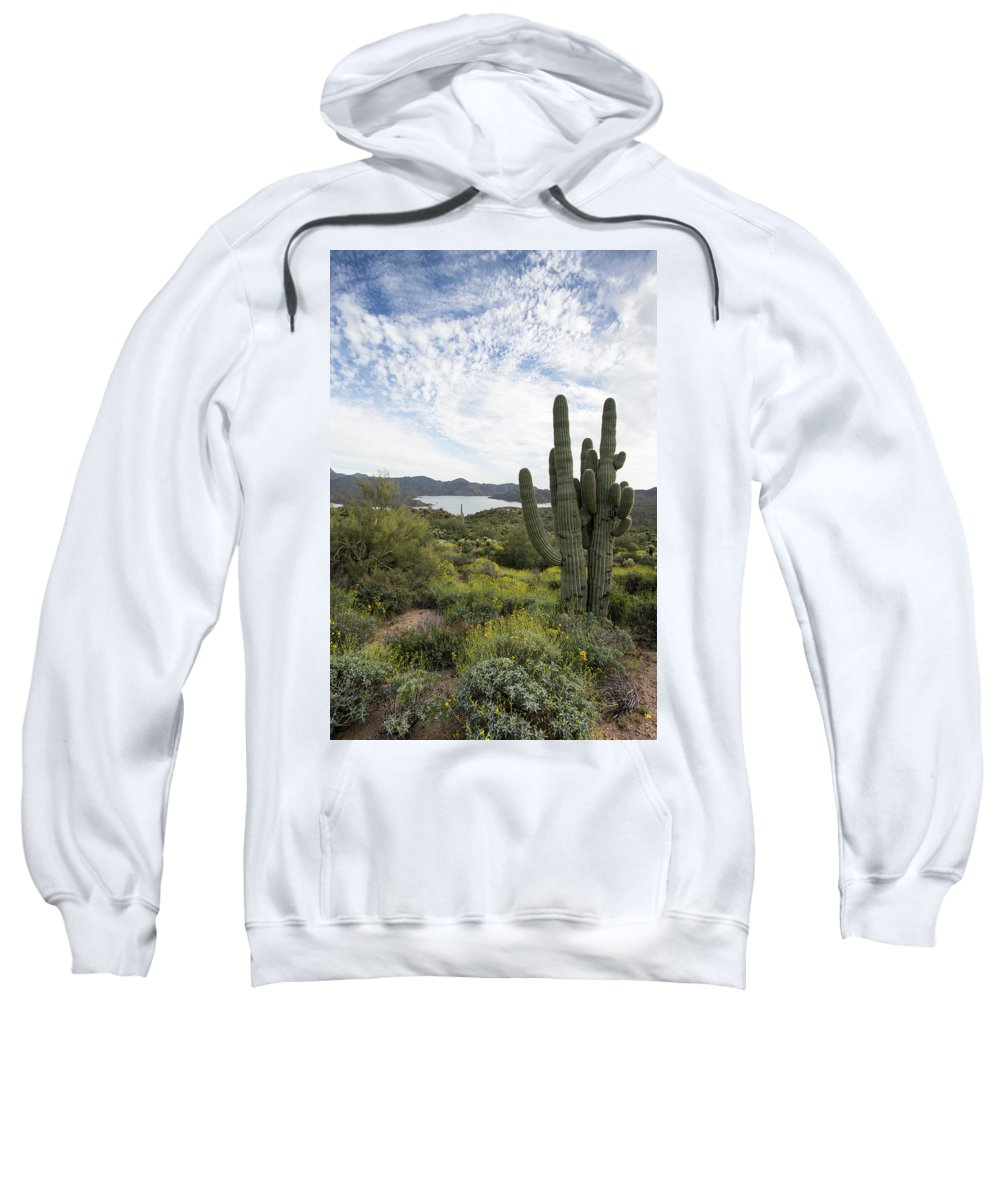 Arizona Sweatshirt featuring the photograph Desert Wildflower View by Cathy Franklin
