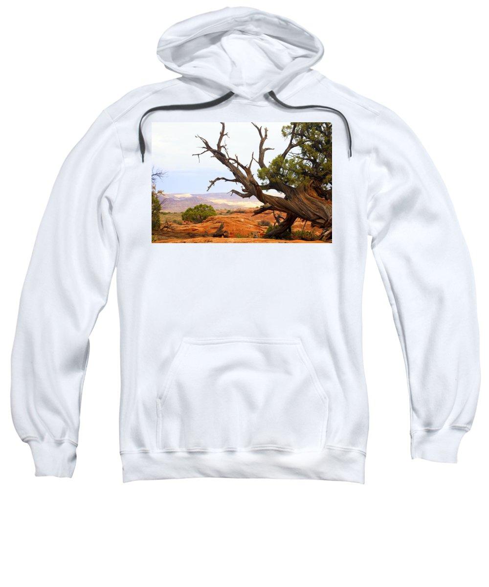 Southwest Art Sweatshirt featuring the photograph Devils Garden 2 by Marty Koch