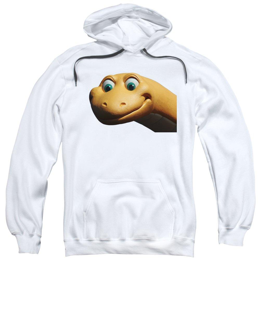 Dinosaur Sweatshirt featuring the photograph Dino by Debbie Oppermann