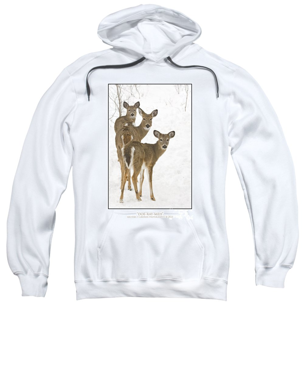 Whitetail Deer Sweatshirt featuring the photograph Doe-ray-meh by Michael Greiner