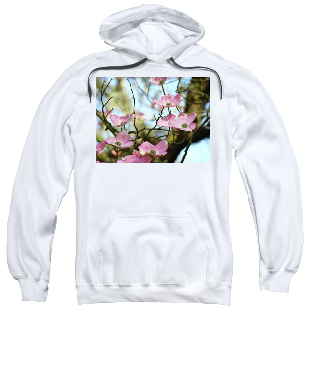 Dogwood Sweatshirt featuring the photograph Dogwood Flowers Pink Dogwood Tree Landscape 9 Giclee Art Prints Baslee Troutman by Baslee Troutman