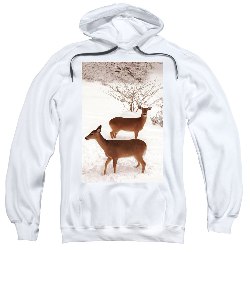 Deer Sweatshirt featuring the photograph Double Trouble by Lori Tambakis