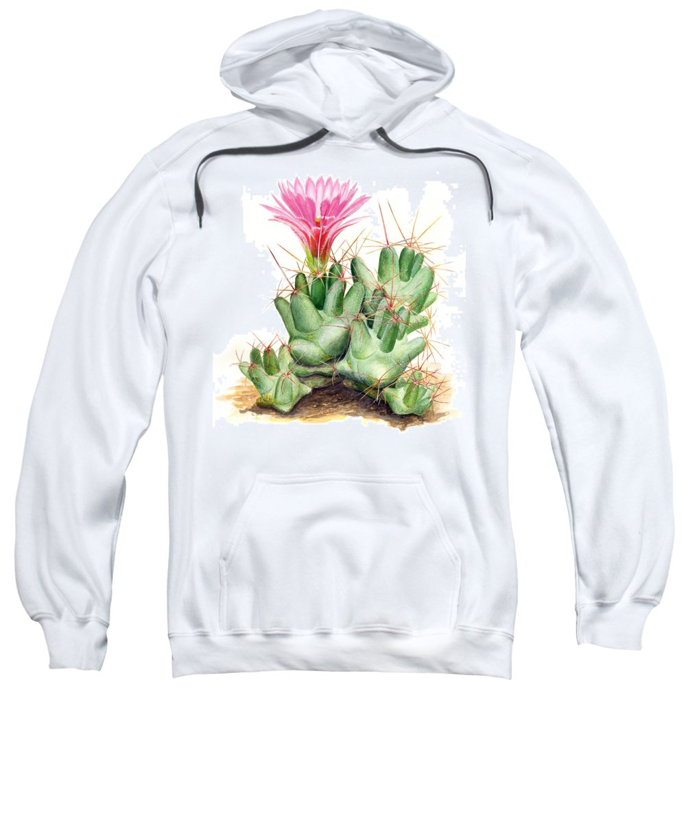 Nature Sweatshirt featuring the painting Dumpling Cactus by Sue Sill