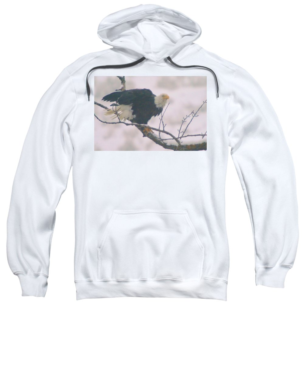 Eagles Sweatshirt featuring the photograph Eagle by Jeff Swan