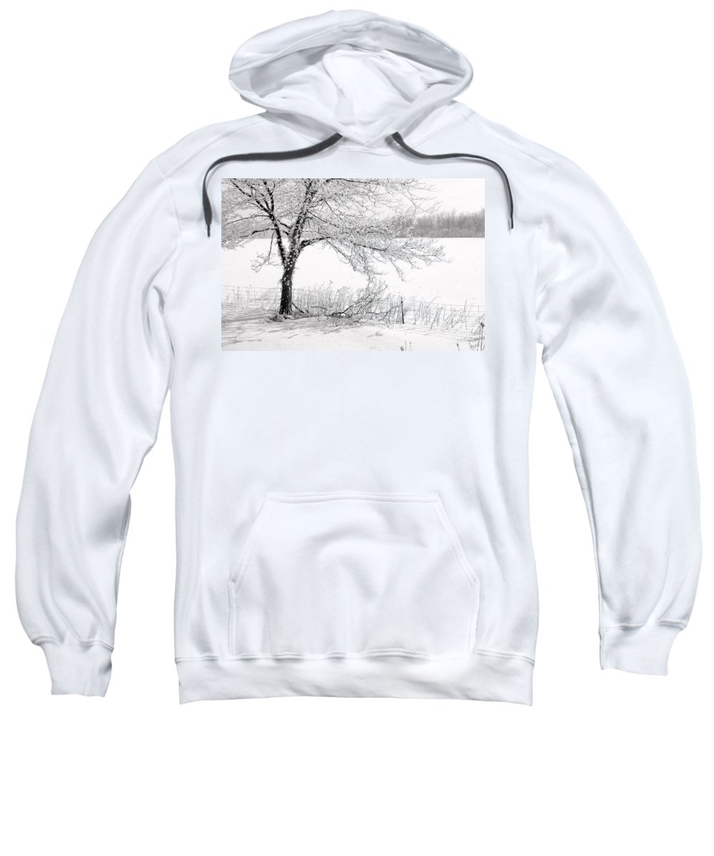 Canada Sweatshirt featuring the photograph Early Frost by Doug Gibbons