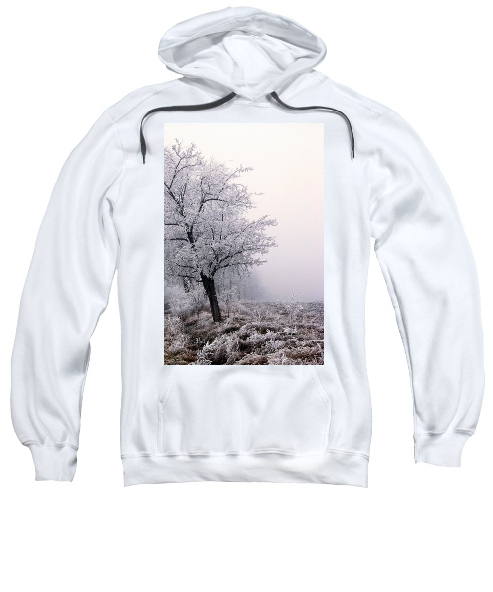 Frost Sweatshirt featuring the photograph Early Morning Frost by Cliff Norton