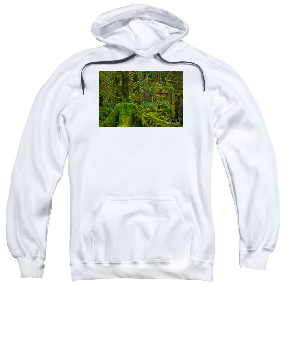 Sweatshirt featuring the photograph Endless Green by Adam Jewell