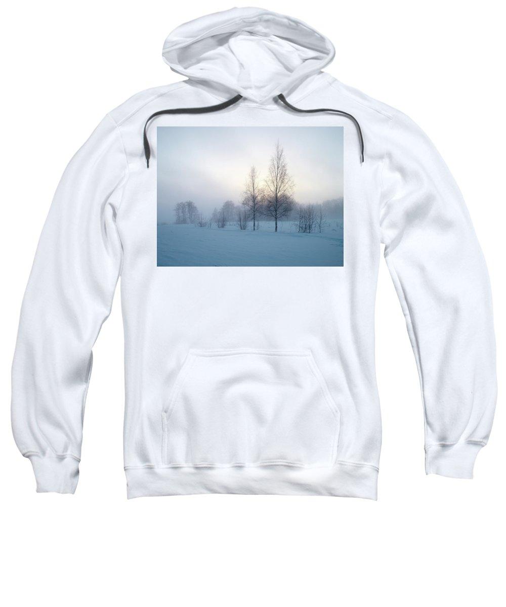 Lehtokukka Sweatshirt featuring the photograph Evening Birches by Jouko Lehto