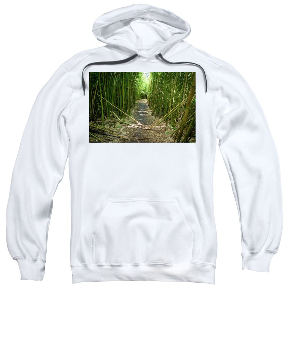 Climate Sweatshirt featuring the photograph Exlporing Maui's Bamboo by Cory Huchkowski