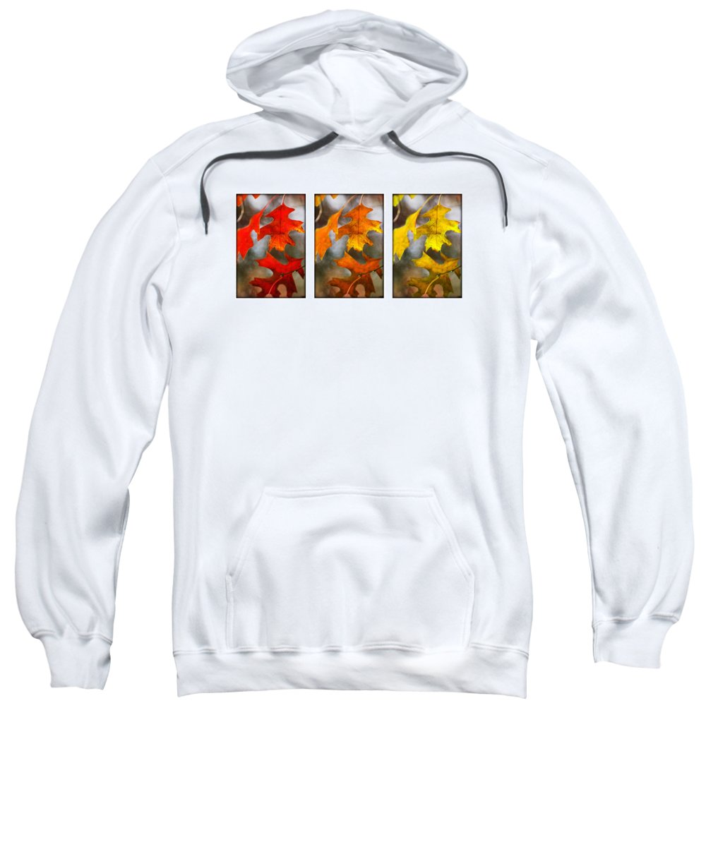 Leaves Sweatshirt featuring the photograph Fall Leaves by Jill Reger