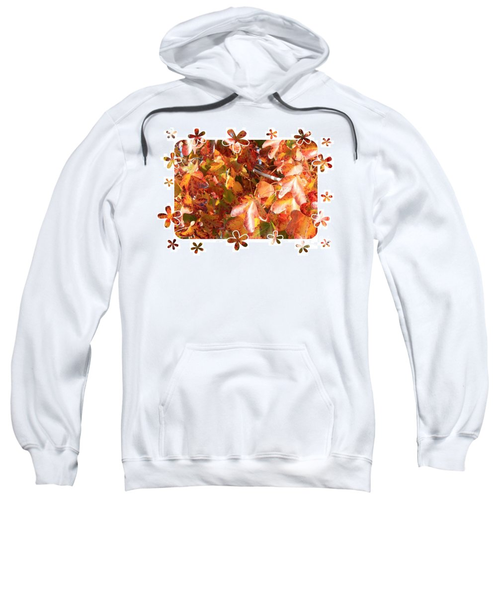 Fall Leaves Sweatshirt featuring the photograph Fall Leaves With Framing by Carol Groenen