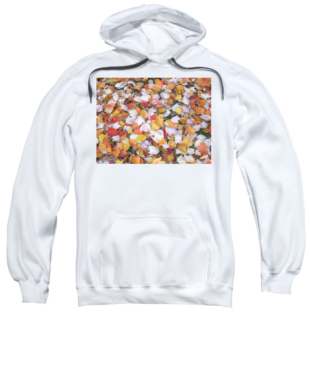 Photography Fall Autum Leaves Sweatshirt featuring the photograph Fallen Fantasy by Karin Dawn Kelshall- Best