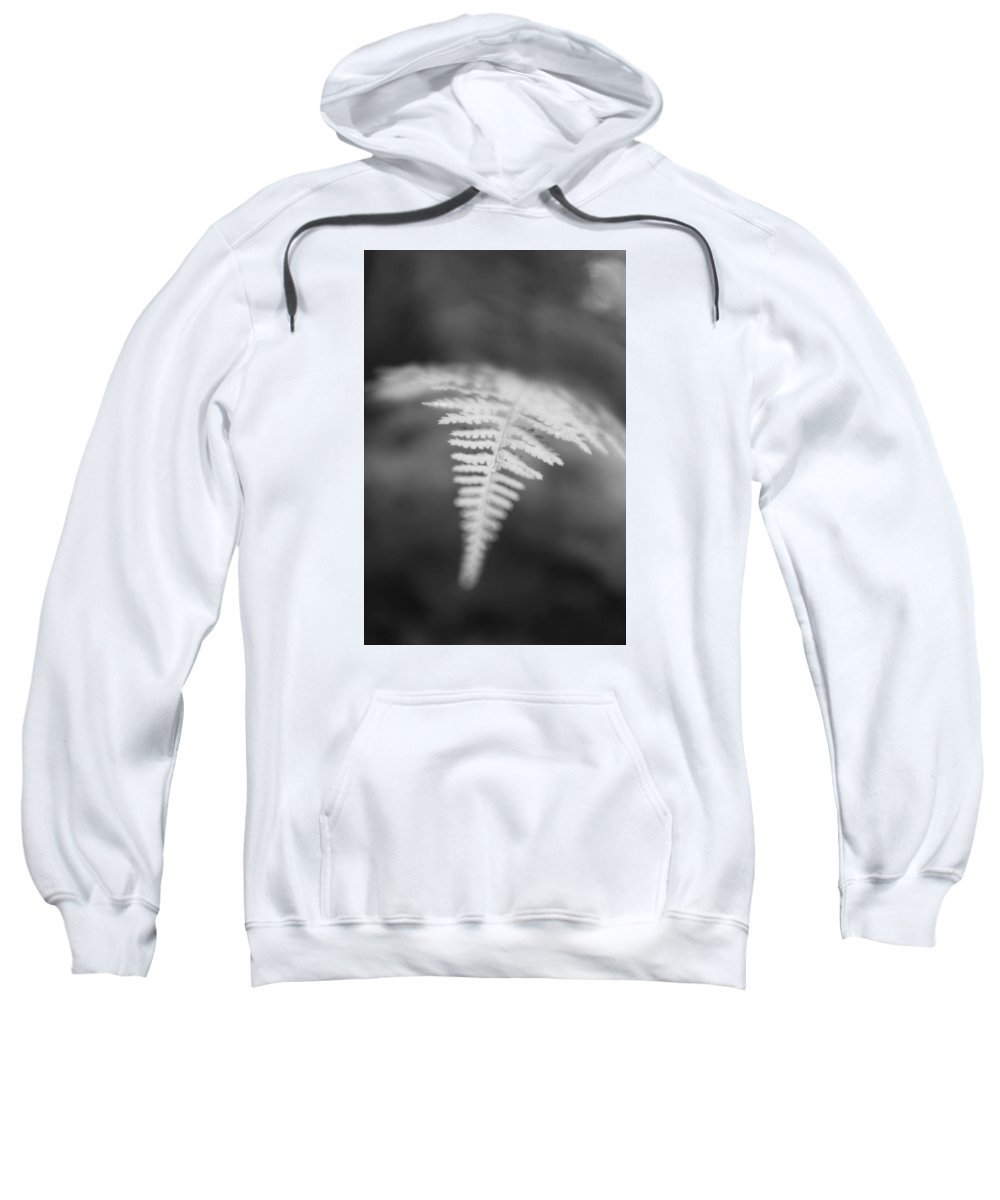 Fern Sweatshirt featuring the photograph Fern I by Phillippe Diederich