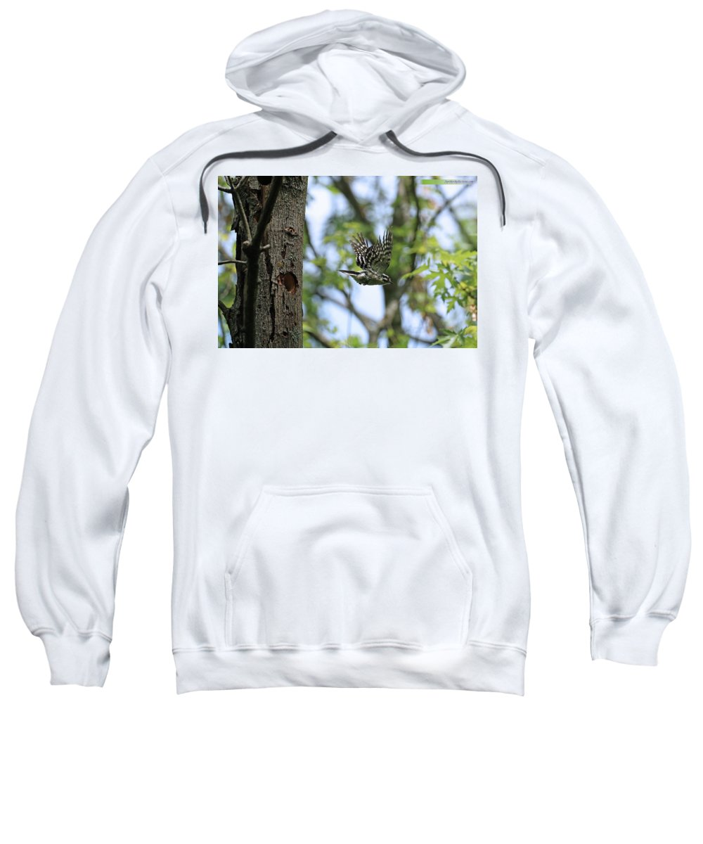 Downy Sweatshirt featuring the photograph Finding More Dinner by Rick Lobejko