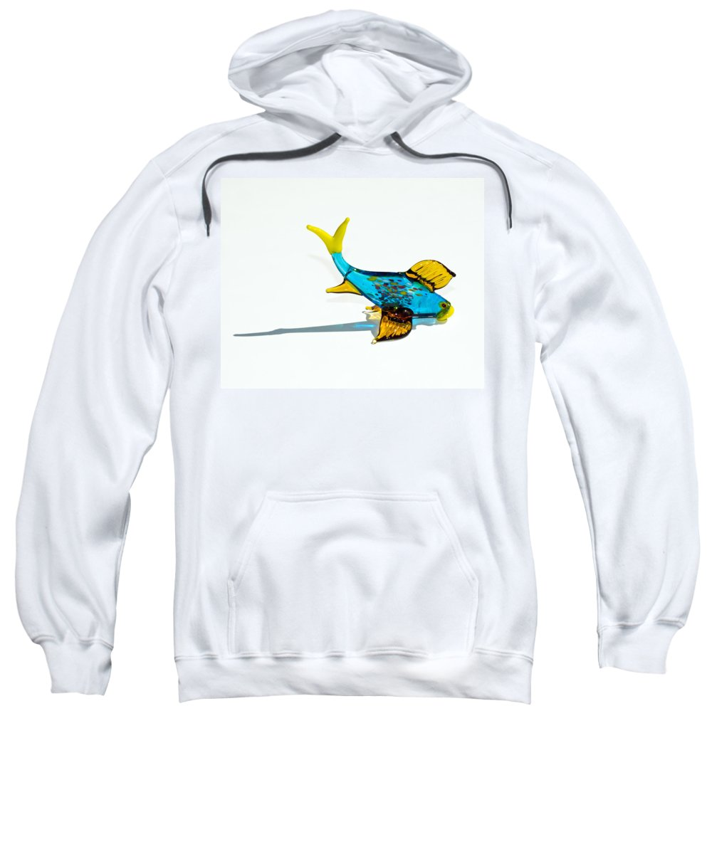 Tropic Sweatshirt featuring the photograph Fish Out Of Water by Allan Hughes