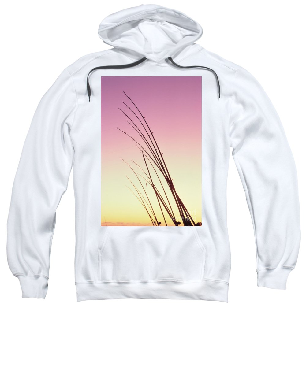 Afternoon Sweatshirt featuring the photograph Fishing Poles by William Waterfall - Printscapes