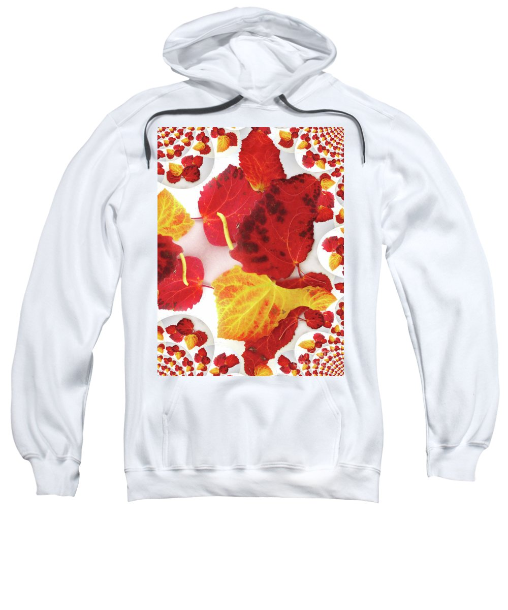 Five Autumn Leaves Sweatshirt featuring the photograph Five Autumn Leaves by Martin Howard