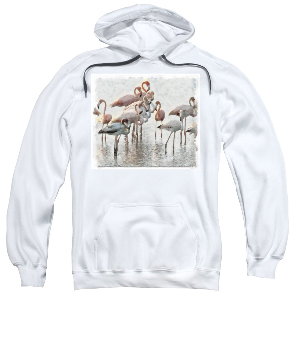 Flamingos Red Birds Wather Reflects Sweatshirt featuring the photograph Flamingos Family by Galeria Trompiz