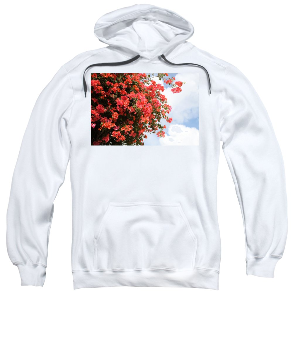 Hawaii Sweatshirt featuring the photograph Flowering Tree by Nadine Rippelmeyer