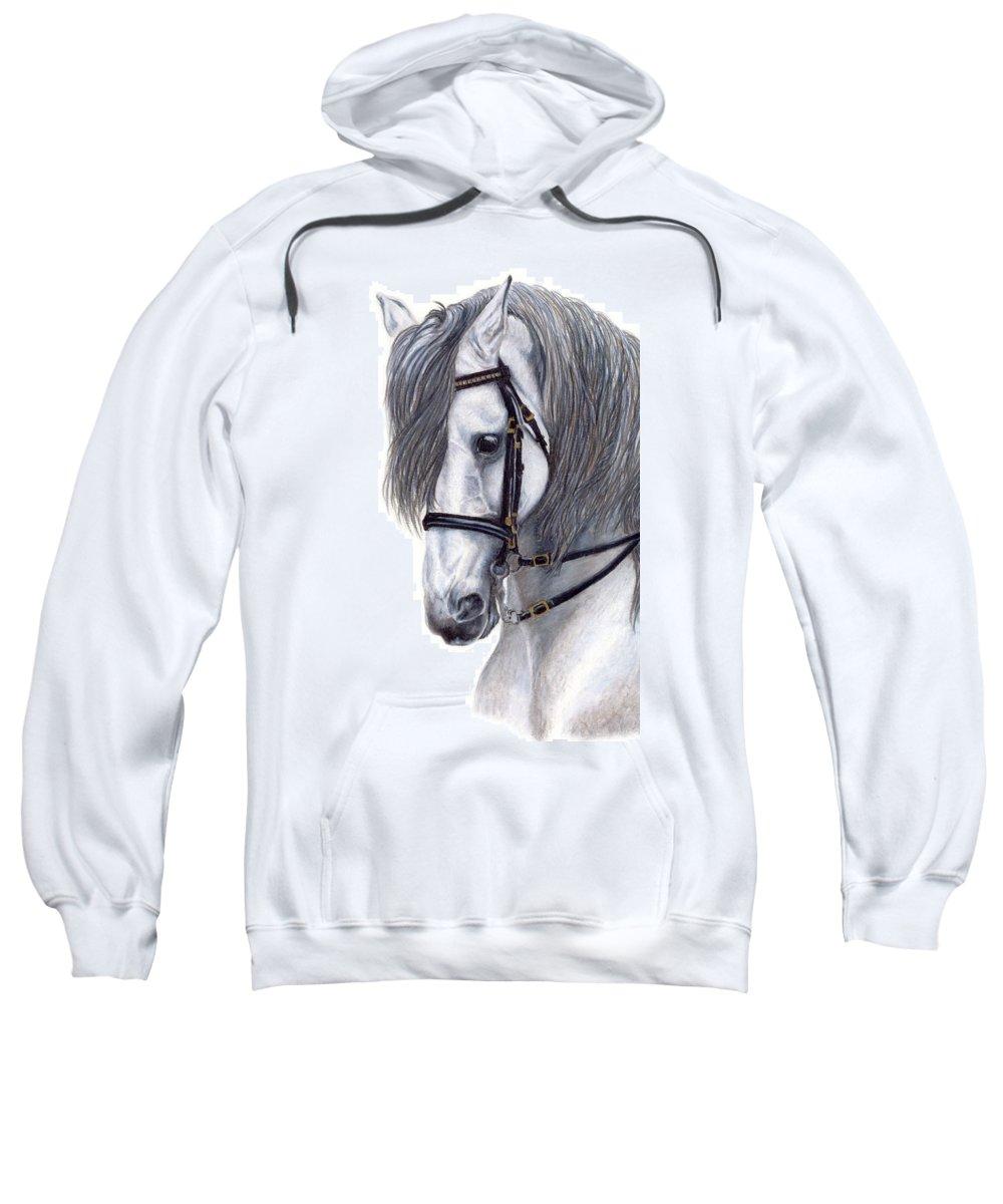 Horse Sweatshirt featuring the drawing Focus by Kristen Wesch