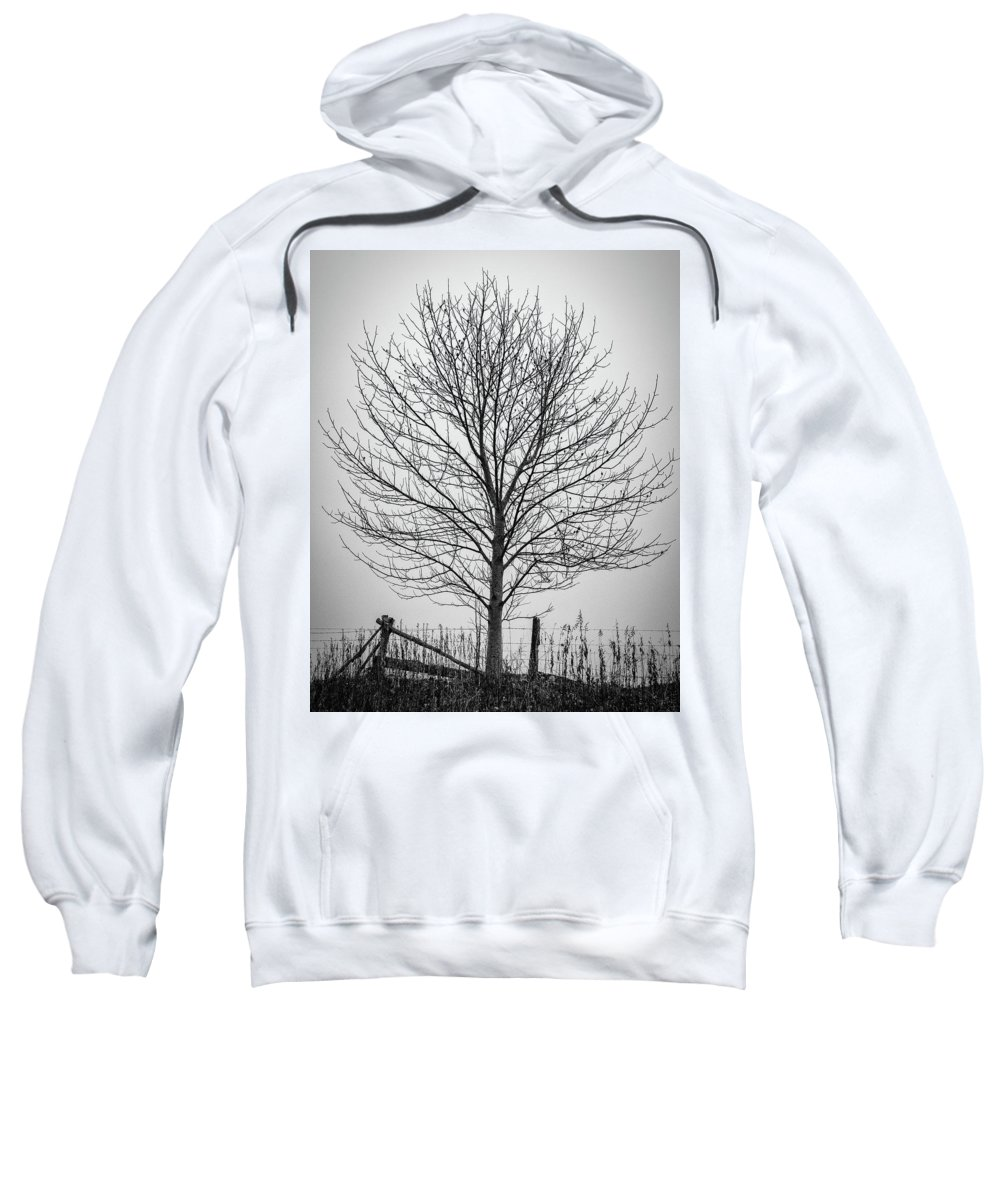 Simple Sweatshirt featuring the photograph Foggy Lone Tree Hill Fine Art by Mike Koenig