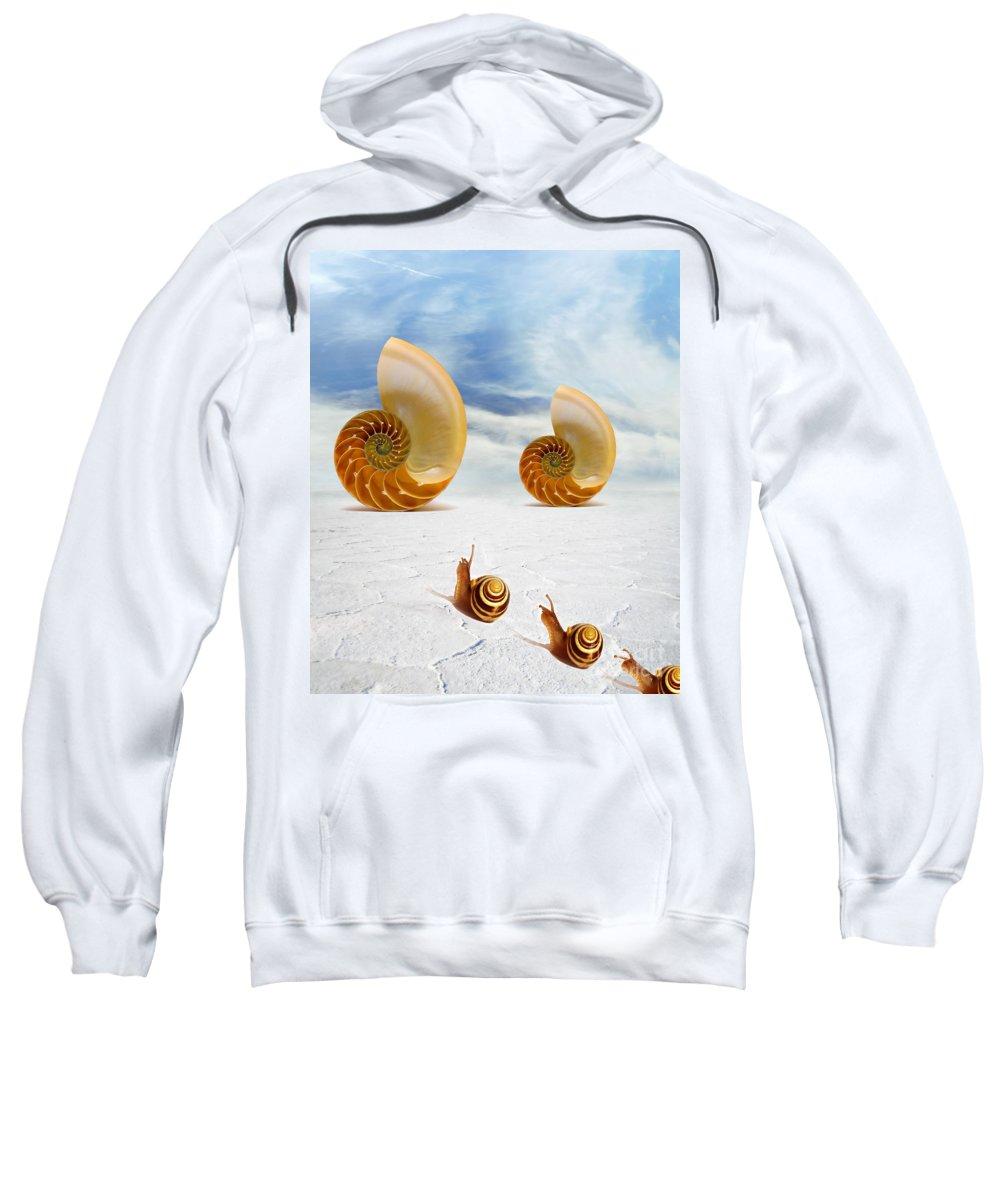 Photodream Art Sweatshirt featuring the digital art Follow Your Dreams by Jacky Gerritsen