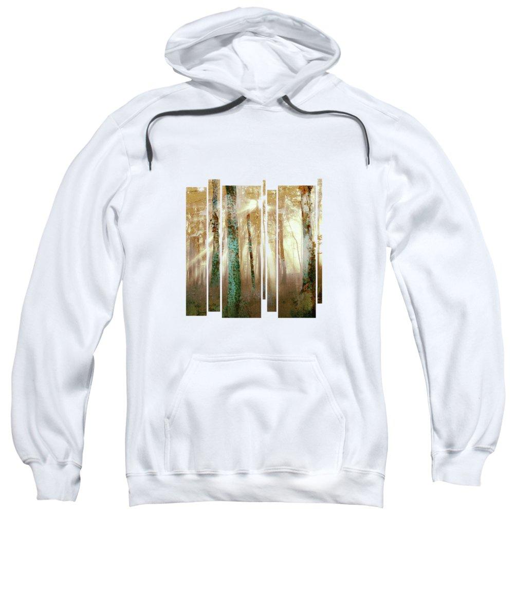 Sun Rays Hooded Sweatshirts T-Shirts