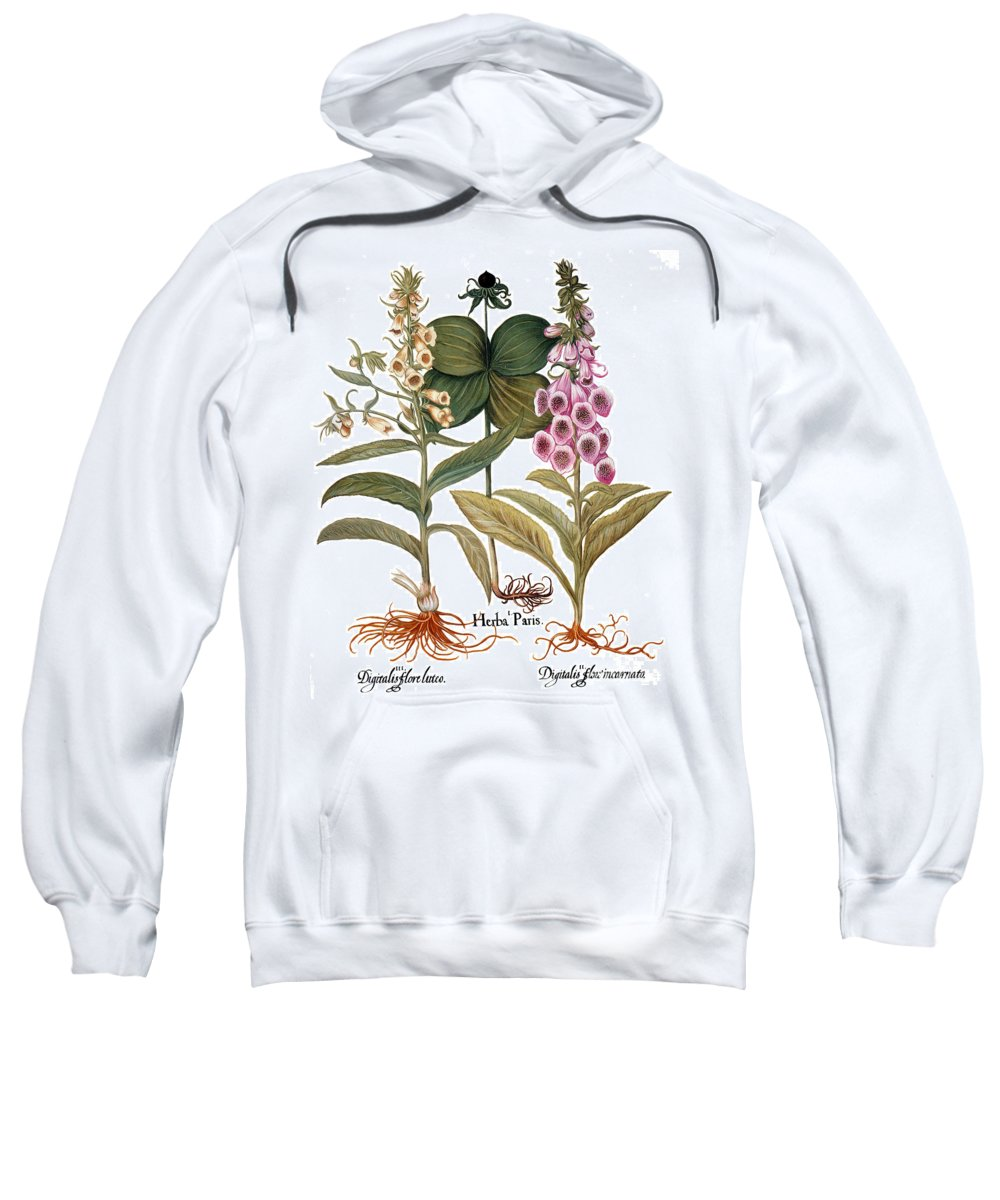 1613 Sweatshirt featuring the photograph Foxglove And Herb Paris by Granger