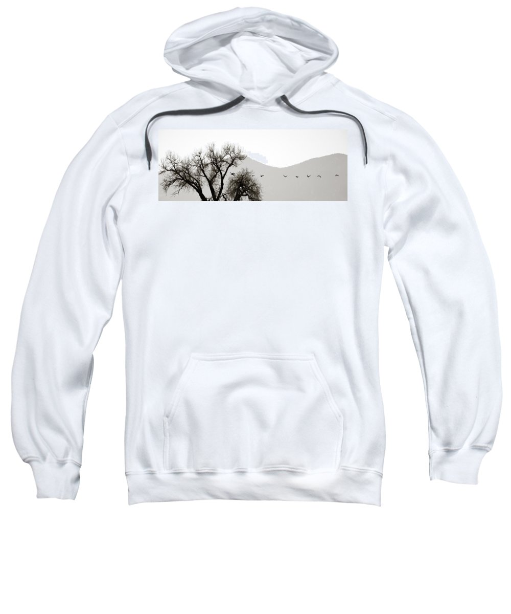Horizon Sweatshirt featuring the photograph Free Flying by Marilyn Hunt