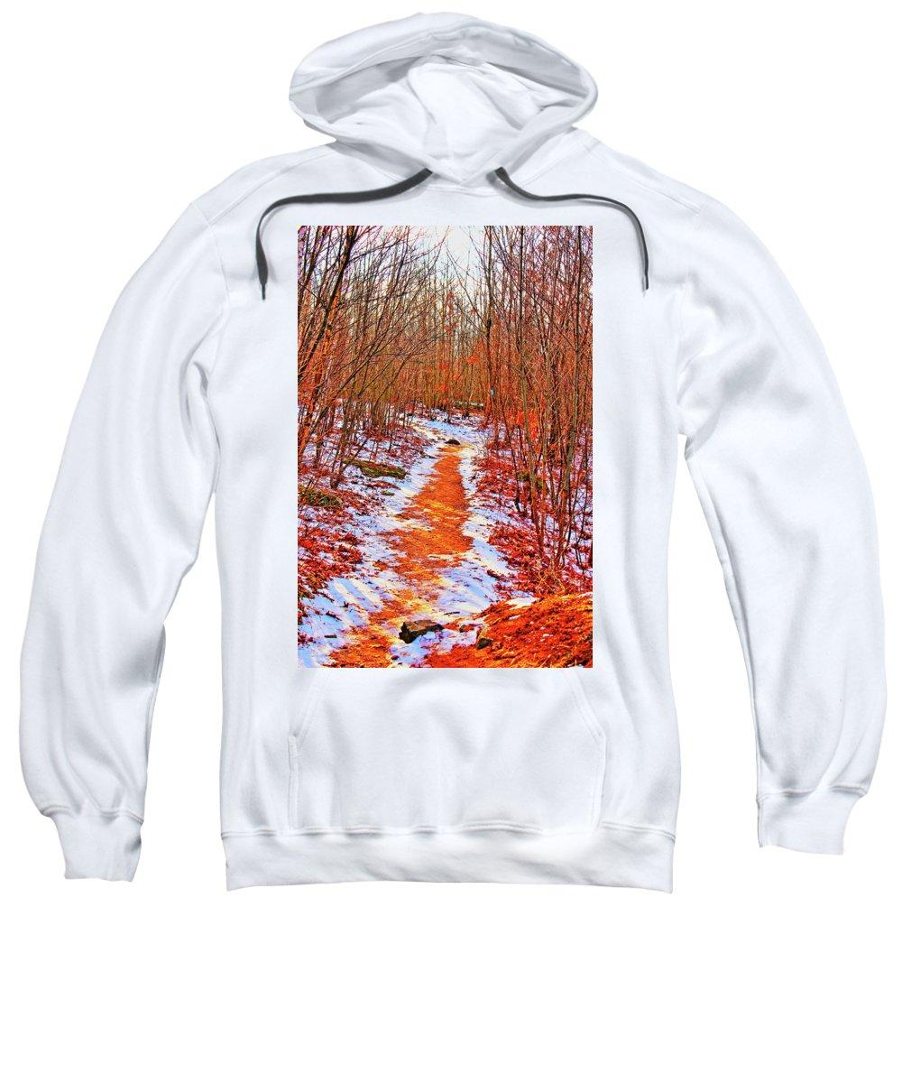 Landscape Sweatshirt featuring the photograph Frigid Walk by Christina M