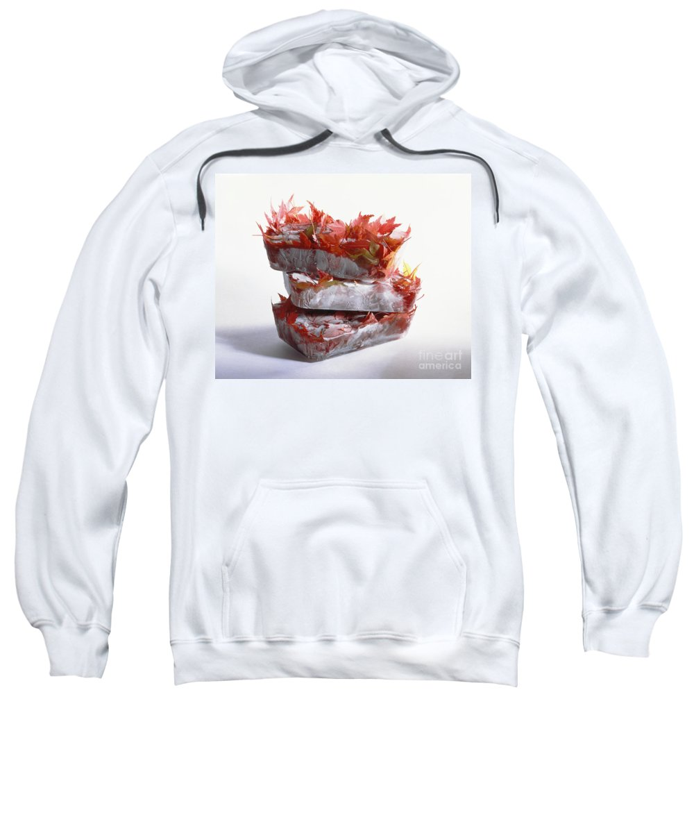 Composition Sweatshirt featuring the photograph Frozen Maple Leaves by Stefania Levi