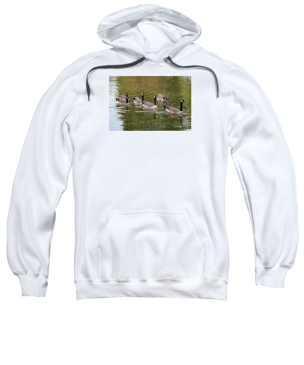 Canada Goose Sweatshirt featuring the photograph Geese On Pond by Carol Groenen