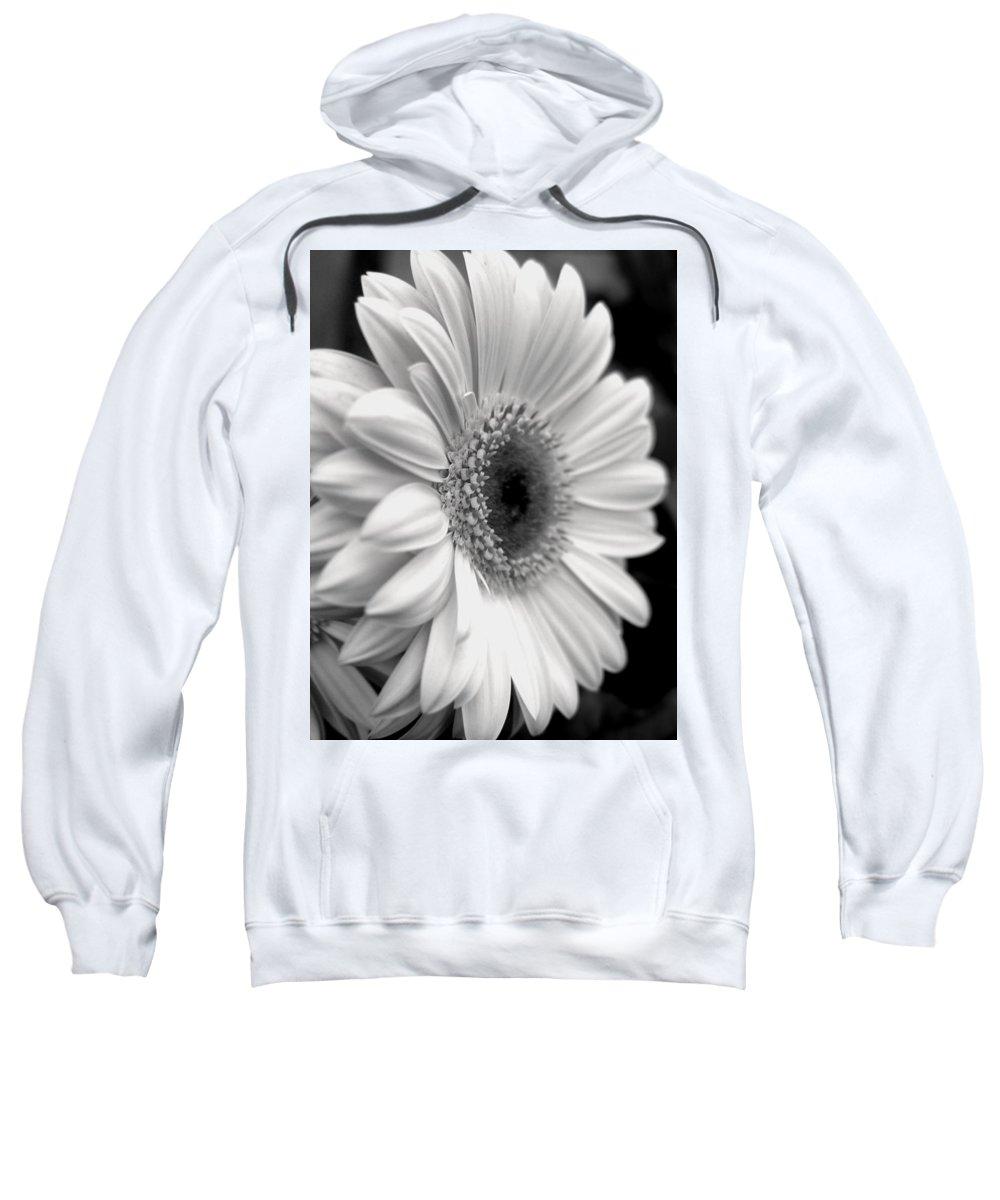 Flora Sweatshirt featuring the photograph Gerbera Daisy by Natasha Sweetapple