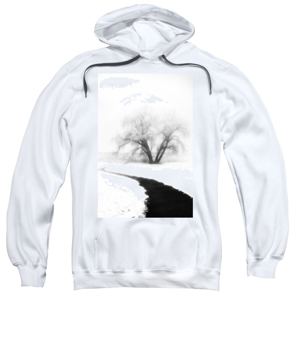 Tree Sweatshirt featuring the photograph Getting There by Marilyn Hunt