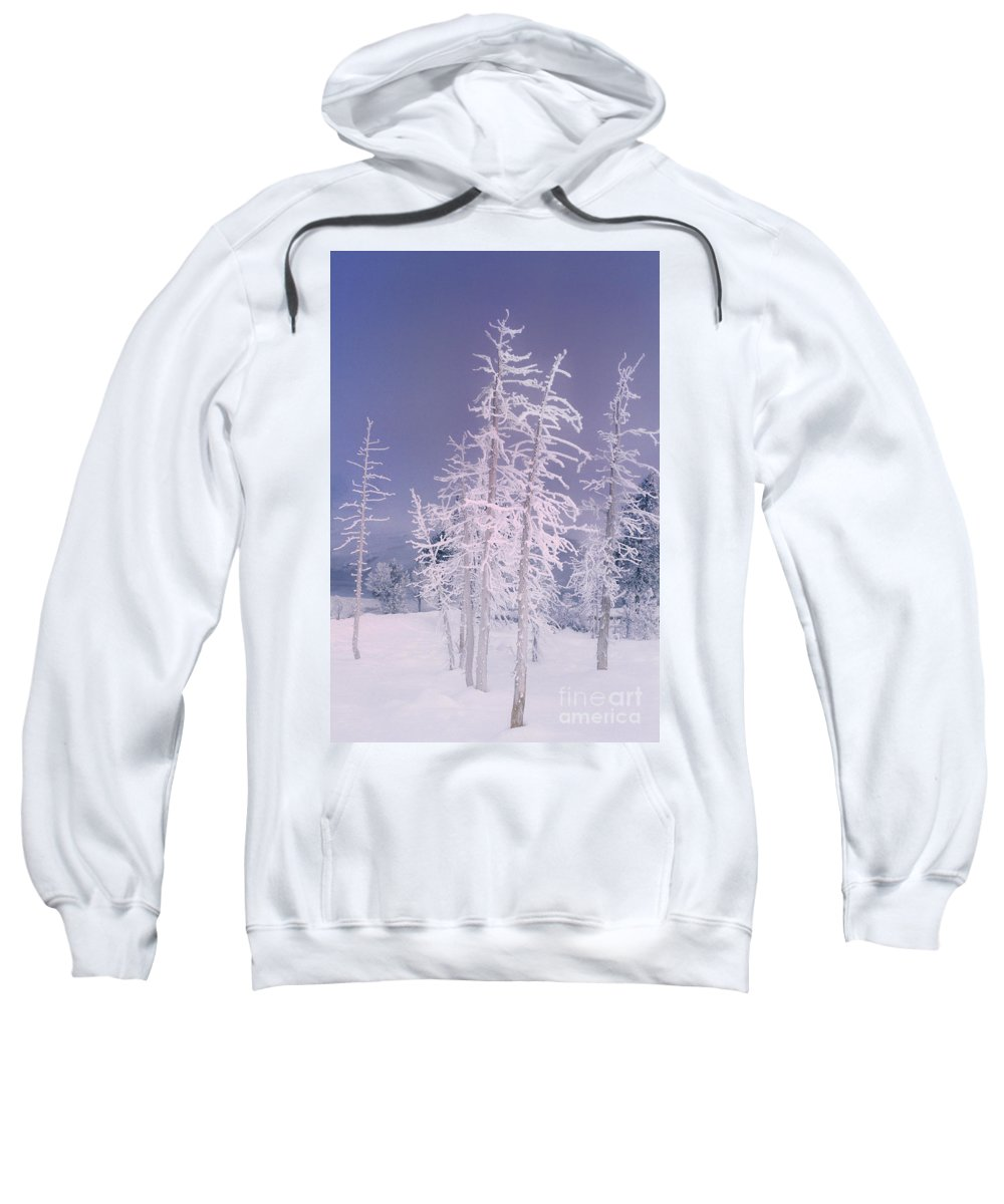 North America Sweatshirt featuring the photograph Ghost Trees Yellowstone National Park by Dave Welling