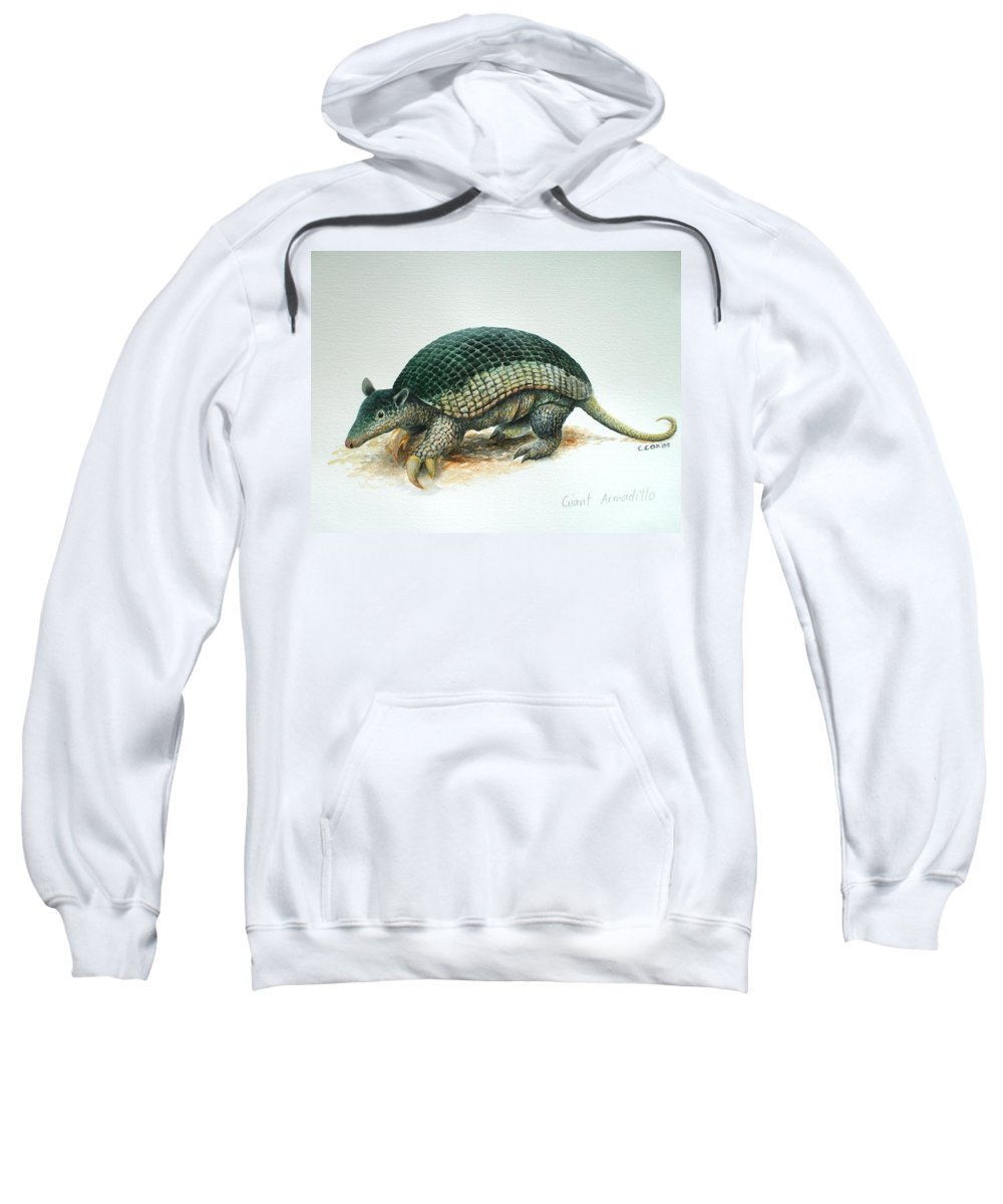 Giant Armadillo Sweatshirt featuring the painting Giant Armadillo by Christopher Cox