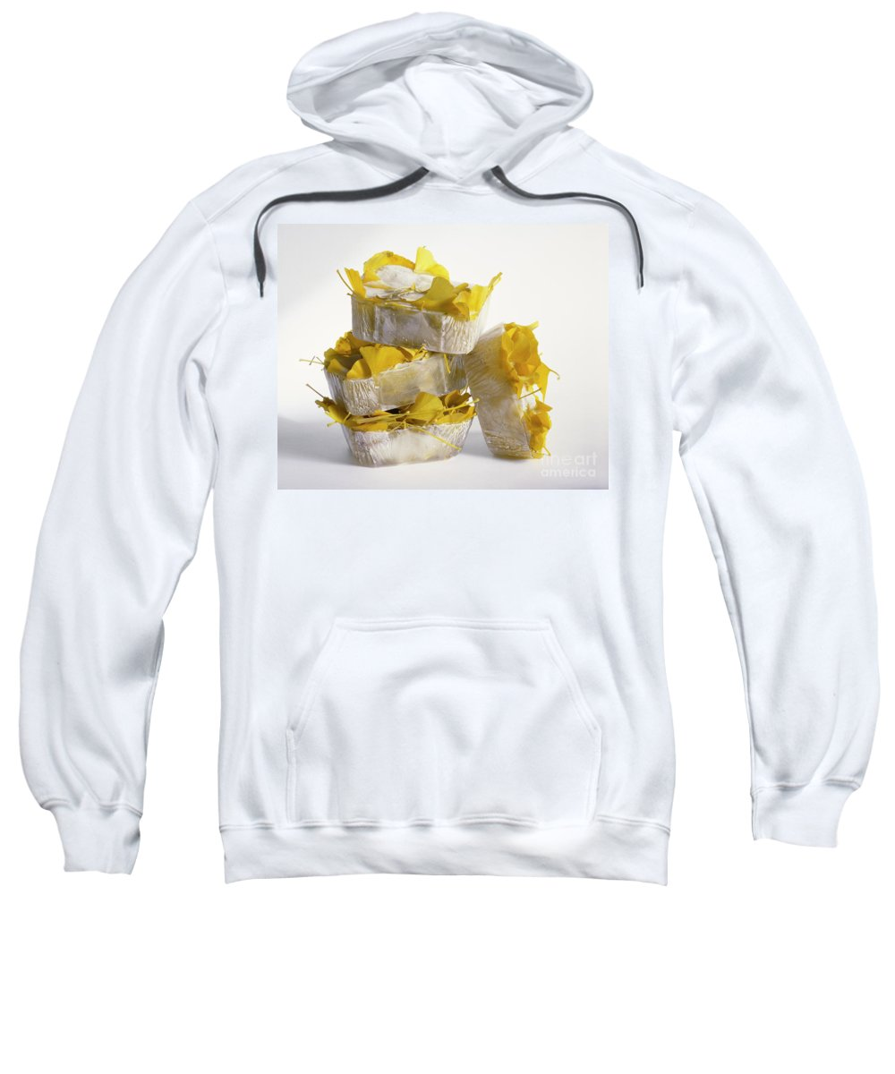 Icy Sweatshirt featuring the photograph Ginkobiloba by Stefania Levi