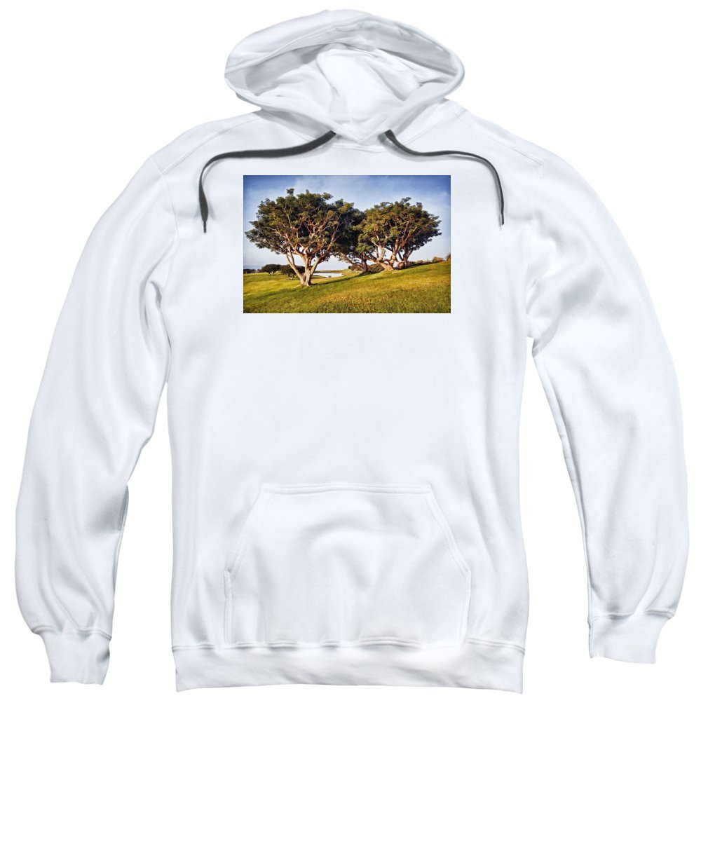 Trees Sweatshirt featuring the photograph Glory In The Morning Pntb by Theo O'Connor