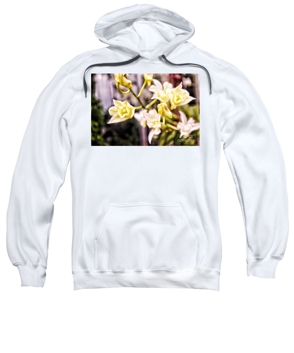 Sweatshirt featuring the photograph Glowing Garden by Biz Bzar