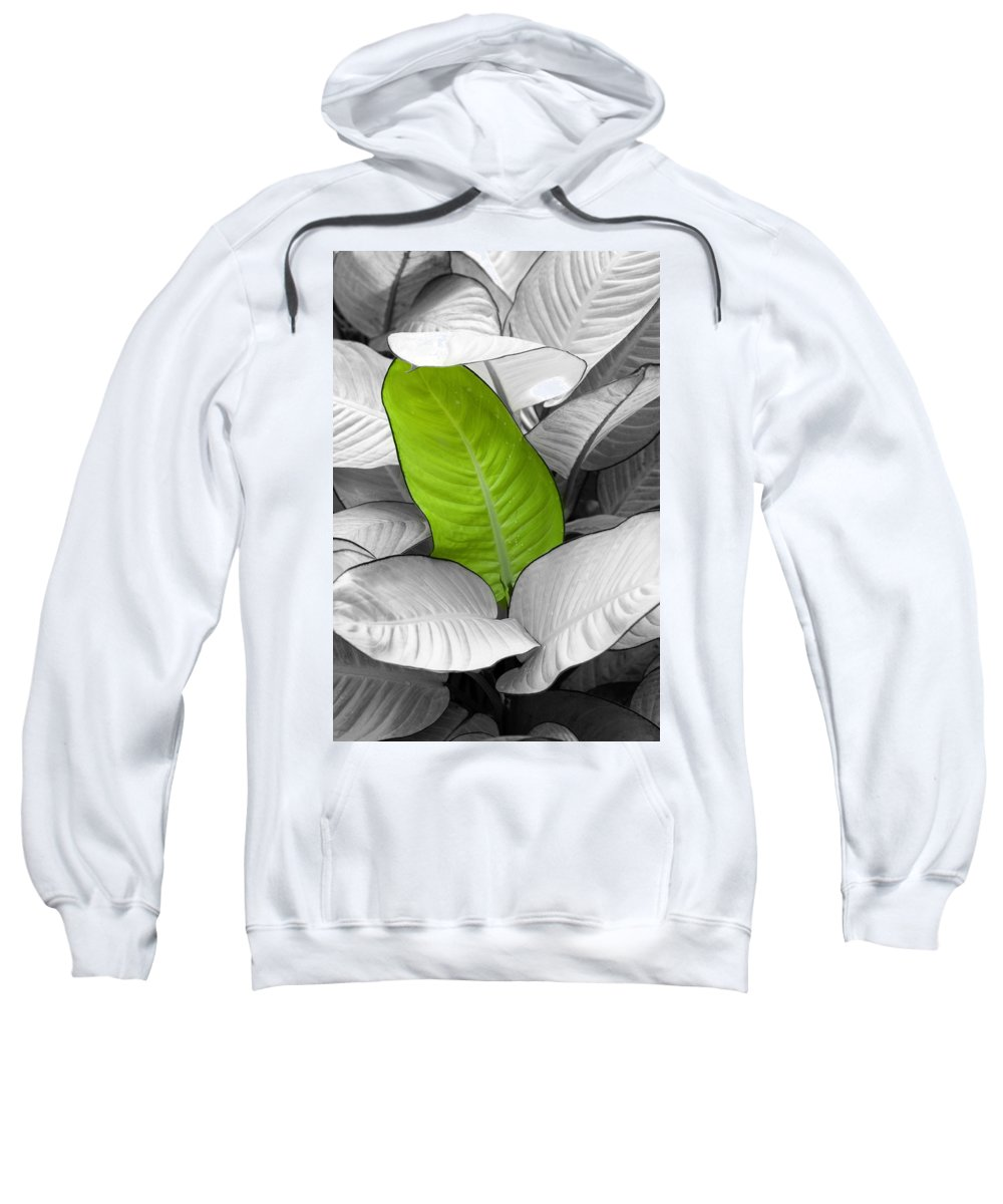 Leaf Sweatshirt featuring the photograph Going Green Lighter by Marilyn Hunt